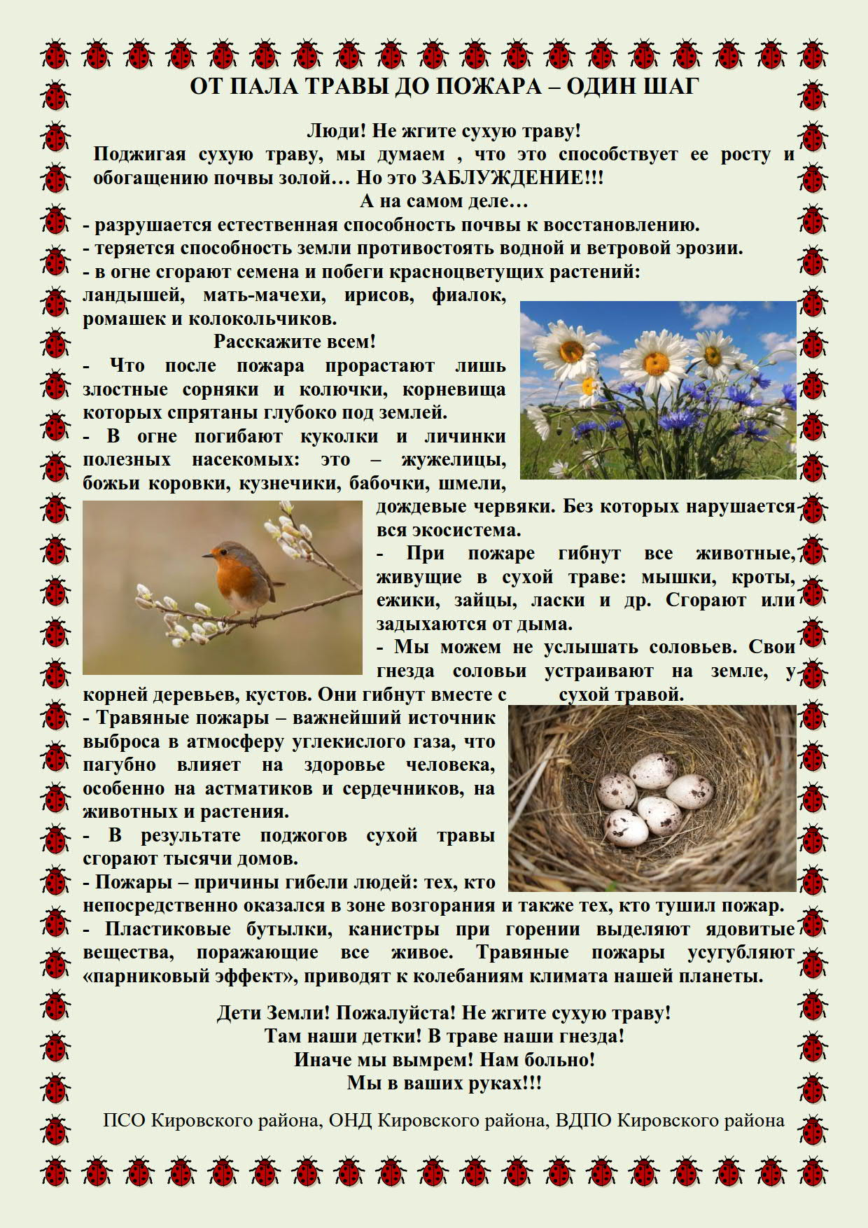 ПАЛ травы - 31_1