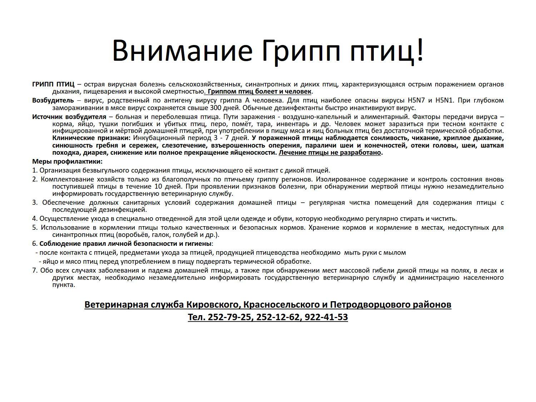 Презентация Microsoft Office PowerPoint_2
