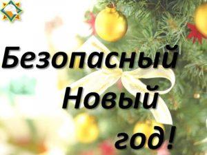 нов. год